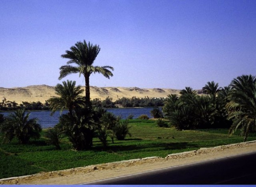 Nile Cruises (4 nights, 5 days)