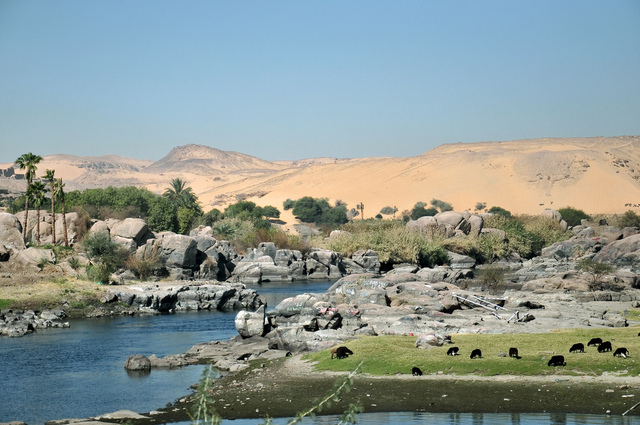 Nile Discovery