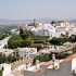 Culinary tours In Spain Andalucía and Cadiz