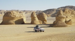 Valley of The Whales Fayoum Oasis